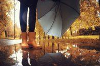 Fall Health and Wellness Tips